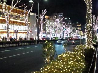 表参道のイルミ.jpg