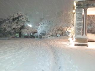 雪の高輪.jpg